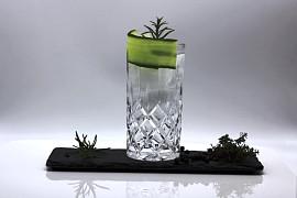 Gin & Tonic 300